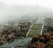 Tongariro Crossing the Ascent, New Zealand  by Janis Möller
