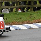 Sidecars by lendale