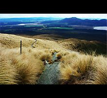 Tongariro Crossing the Descent, New Zealand by Janis Möller