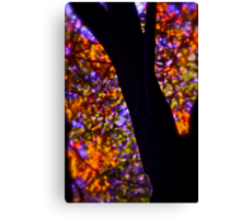 521 # # # # October stained glass window painted by nature , Brown SugarStoryBook ..Views: 521 Thx! Canvas Print