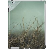 Looking through the Glass  iPad Case/Skin