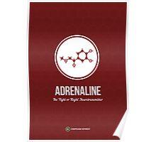 Neurotransmitter Series: Adrenaline Poster