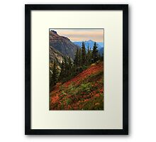 Sahale Arm Framed Print