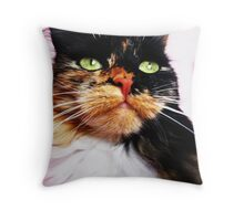 It`s only a matter of time(before I rule the world) Throw Pillow