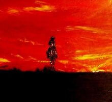Lonely Midnight Cowboy by Joyce MacPhee