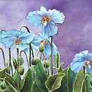 Blue Poppies by Bobbi Price