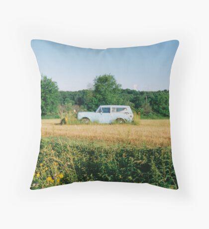 Landmark Throw Pillow