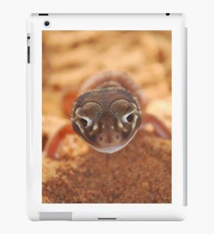 N. Levis Levis iPad Case/Skin