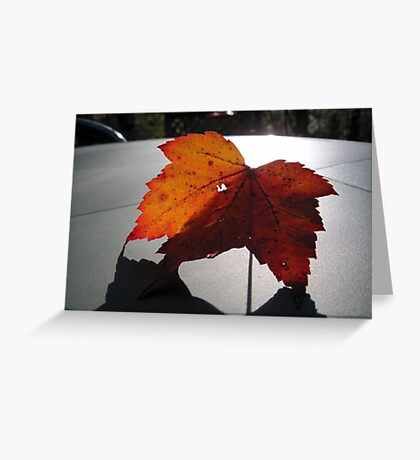 A Leaf and Its Shadow Greeting Card