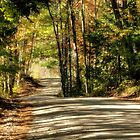 Autumn Country Road by Monica M. Scanlan