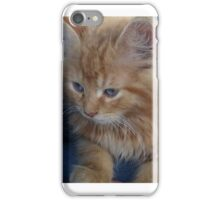 The precious kitten iPhone Case/Skin