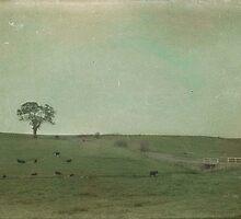 Ten Cows by garts