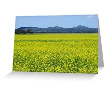 You Yangs and canola Greeting Card