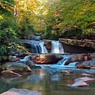 Waterfall On Decker Creek by Gene Walls