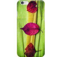 Magic Autumn ...Fellows iPhone Case/Skin
