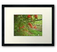 Flowers for Summer Framed Print