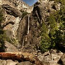 Lower Yosemite Fall by Blake Rudis