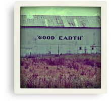 good earth Canvas Print