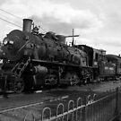 Steam Train by Elisa Camera