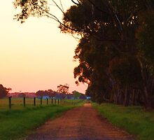 country road  by bradnath