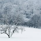 Winter overture by AndreeaGogu