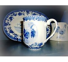 Blue & White pattern -Cockerell Photographic Print