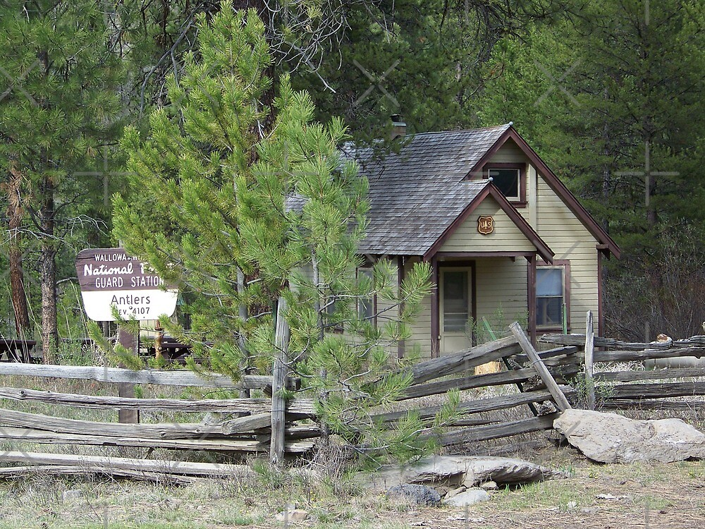 Antlers Guard Station by Betty  Town Duncan
