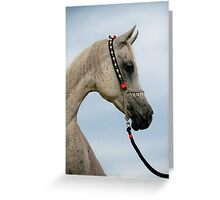 Clifton Park Nefisa (Nile x Nazelle) Greeting Card