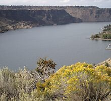 Lake Billy Chinook by Pam2t1968