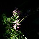 Beautiful Weeds 2 by gigglemonster