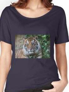 tiger at the zoo Women's Relaxed Fit T-Shirt