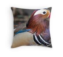 Multi coloured duck Throw Pillow
