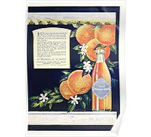 Advertisements Photoplay Magazine July through December 1920 0483 Orange Crush Poster