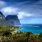 Island Paradise by Melissa Fiene