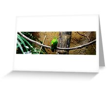 Bird On The Wire Greeting Card