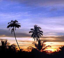 Boracay Skyline by Wayne Holman
