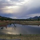 Dam in the Flinders by yeuxdechat