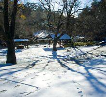 Memorial Park Snow by Geoff Smith