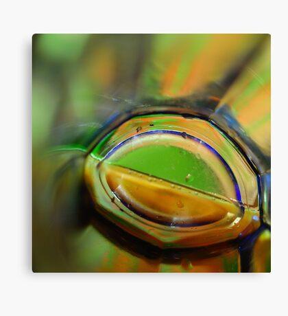 Through A Glass Brightly Canvas Print