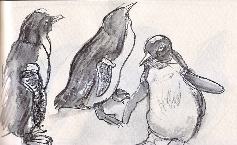 Fairy Penguins at Melbourne Zoo. by WoolleyWorld
