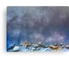 Ice Age Canvas Print