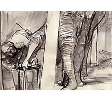 Elephant getting a manicure. Photographic Print