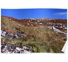 Irish Countryside Poster
