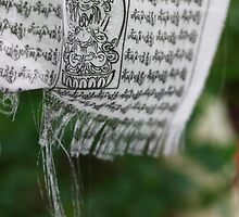 himalayan prayer flag (1) by codaimages