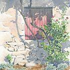 Vine-shaded window, Les Michelots, France by ian osborne