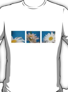 Baby Blue Daisies T-Shirt
