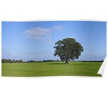 A tree a cloud a field the sky Poster