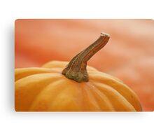 ohhhh pumpkin! Canvas Print