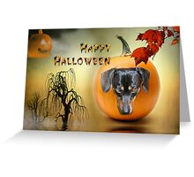 Happy Halloween from my Dachshund Jazz Greeting Card