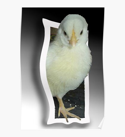 Chick..Escaping Poster
